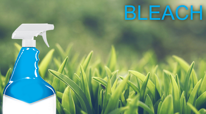Does Bleach Kill Weeds? - Weedicide co uk