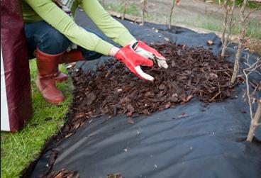 mulch-weed-control-fabric