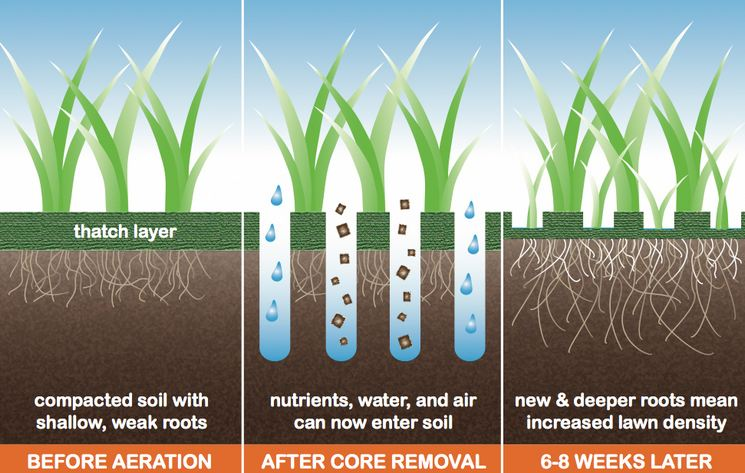 core-aeration-benefits-uk
