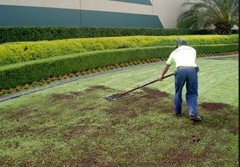 lawn-top-dressing-aerate