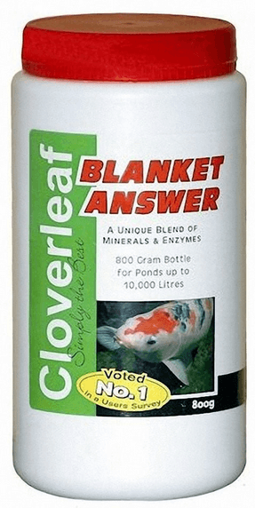 cloverleaf-blanket-answer-treatment